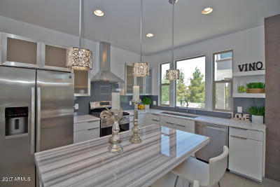 Tempe Single Family Home For Sale: 1106 E Weber Drive #1003