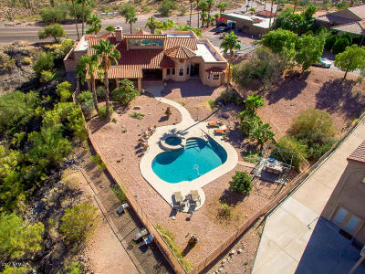 Fountain Hills Single Family Home For Sale: 10817 N Pinto Drive
