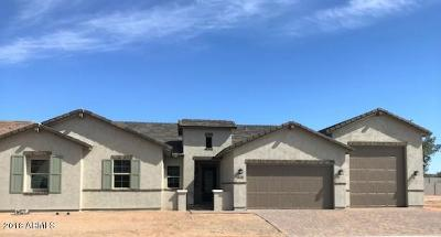 Cave Creek Single Family Home For Sale: 31529 N 41st Place