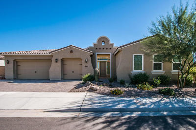 Mesa Single Family Home For Sale: 1843 N 99th Way