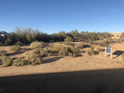 Scottsdale Residential Lots & Land For Sale: 9918 E Sundance Trail