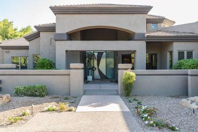 Paradise Valley Single Family Home For Sale: 6979 E Berneil Drive