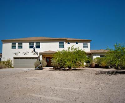 Mesa Single Family Home For Sale: 10418 E McLellan Road
