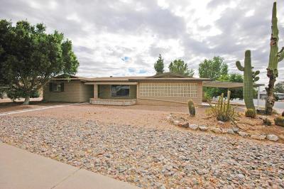Mesa Single Family Home For Sale: 6209 E Evergreen Street
