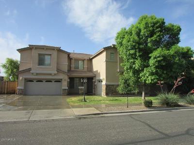 Queen Creek Single Family Home For Sale: 18525 E Purple Sage Drive