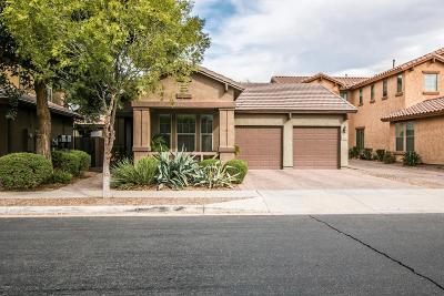 Gilbert Single Family Home For Sale: 3924 E Frances Lane