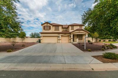 Laveen Single Family Home For Sale: 4040 W Milada Drive