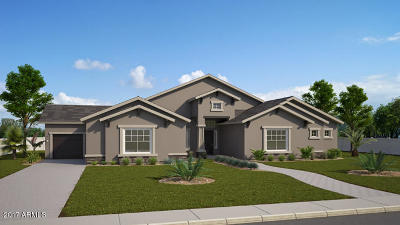 Chandler Single Family Home For Sale: Xxxx Lot08 W Hawken Place