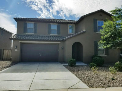 San Tan Valley Single Family Home For Sale: 797 W Desert Hollow Drive