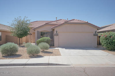 Tolleson Single Family Home For Sale: 2024 S 85th Lane