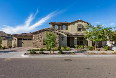 Mesa Single Family Home For Sale: 10638 E Sanger Avenue
