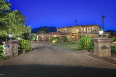 Paradise Valley Single Family Home For Sale: 4743 E Desert Park Place