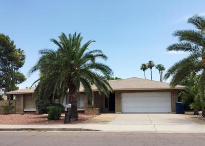 Tempe Single Family Home For Sale: 1715 E Watson Drive