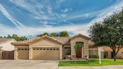 Chandler Single Family Home For Sale: 3601 S Vista Place