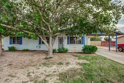 Casa Grande Single Family Home For Sale: 10615 N Arapaho Drive