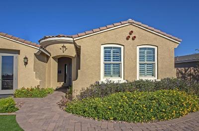 Peoria Single Family Home For Sale: 9008 W Diana Avenue