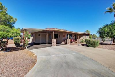 Mesa Single Family Home For Sale: 5326 E Casper Road