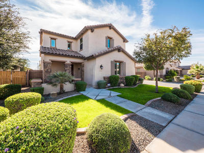 Gilbert Single Family Home For Sale: 2471 E Penedes Drive