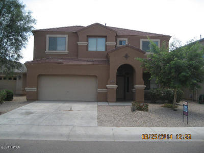 Single Family Home For Sale: 3903 E Citrine Road