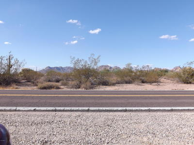 Apache Junction Residential Lots & Land For Sale: N Hwy 88 Highway