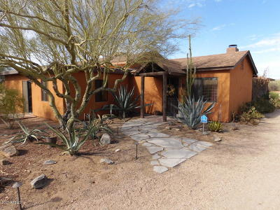 Cave Creek Single Family Home For Sale: 5712 E Peak View Road