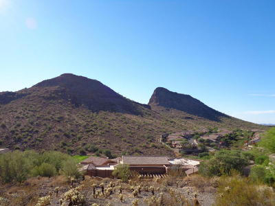 Fountain Hills Residential Lots & Land For Sale: 9804 N Talon Trail