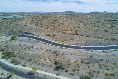 Goodyear Residential Lots & Land For Sale: 17613 W Paseo Way