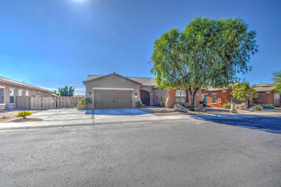 Goodyear Single Family Home For Sale: 16241 W Tohono Drive