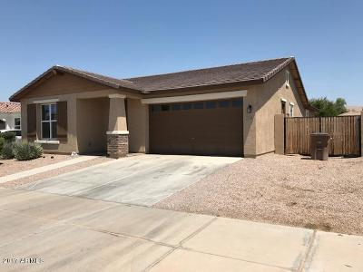 Queen Creek Single Family Home For Sale: 22356 E Cherrywood Drive