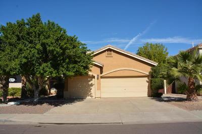 Chandler Single Family Home For Sale: 2620 W Megan Street