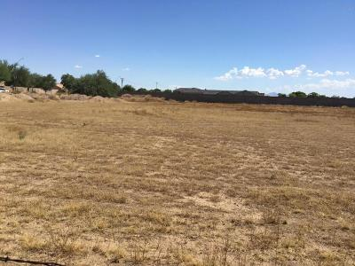 Peoria Residential Lots & Land For Sale: 8343 W Calle Lejos
