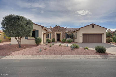 Sun City West Single Family Home For Sale: 22931 N Padaro Drive