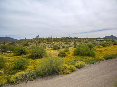 Residential Lots & Land For Sale: 418xx N Old Stage Road