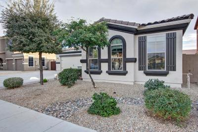 Goodyear Single Family Home For Sale: 16137 W Papago Street
