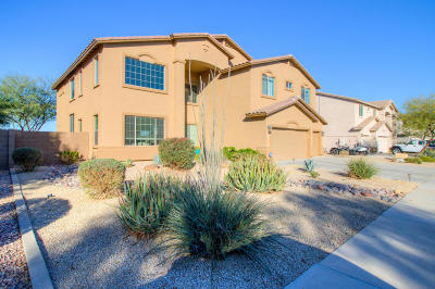 Maricopa Single Family Home For Sale: 22252 N Reinbold Drive