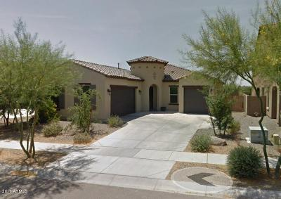 Chandler Single Family Home For Sale: 3893 E San Carlos Place E