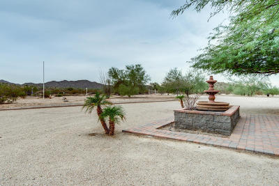 Casa Grande Single Family Home For Sale: 12479 N Faldale Road