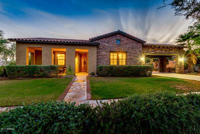 Buckeye Single Family Home For Sale: 20513 W Canyon Drive