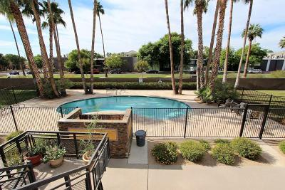 Phoenix Apartment For Sale: 6501 N 17th Avenue #208