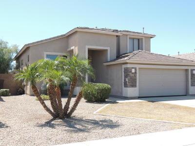Peoria Single Family Home For Sale: 9237 W Clara Lane