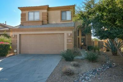 Cave Creek Single Family Home For Sale: 5049 E Lucia Drive