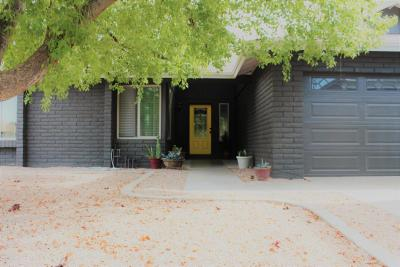 Chandler Single Family Home For Sale: 3011 N Salida Del Sol