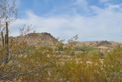 Goodyear Residential Lots & Land For Sale: 8564 S San Filipe Drive