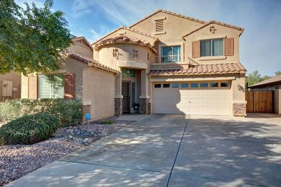San Tan Valley Single Family Home For Sale: 34364 N Barzona Trail