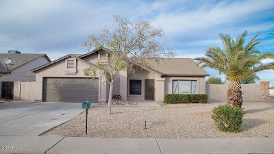 Glendale Single Family Home For Sale: 10702 W Orangewood Avenue