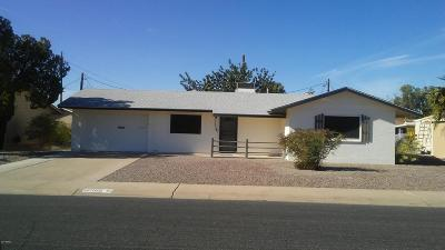 Sun City AZ Single Family Home For Sale: $175,000