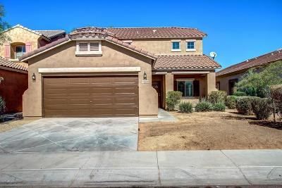 Laveen Single Family Home For Sale: 5226 W Glass Lane