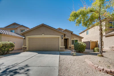 San Tan Valley Single Family Home For Sale: 28122 N Superior Road