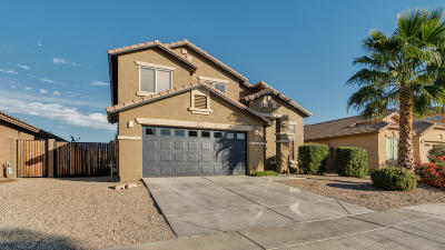 Queen Creek Single Family Home For Sale: 32101 N N Butte Drive