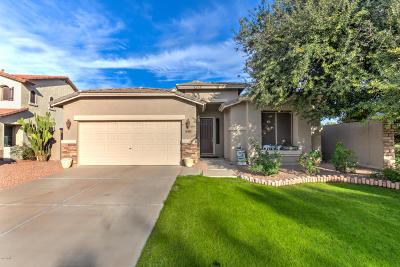 Gilbert Single Family Home For Sale: 6475 S View Lane